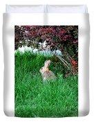 Rabbit Sitting Outdoors. Duvet Cover