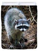 Raccoon  Duvet Cover