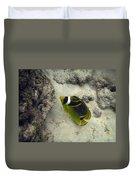 Raccoon Butterflyfish Duvet Cover