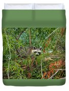Raccoon Napping On Log Duvet Cover