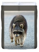 Raccoon On The Prowl Duvet Cover