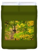 Racoon In Fall Trees Duvet Cover