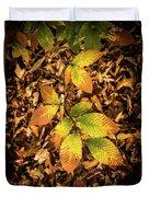 Radiant Beech Leaf Branches Duvet Cover