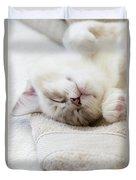 Ragdoll Kitten Asleep Duvet Cover