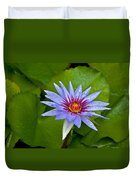 Rain Drenched Blue Lotus In Grand Cayman Duvet Cover