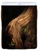 Rain Forest Light Duvet Cover