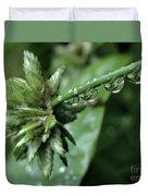 Rain On The Umbrella Plant 2 Duvet Cover