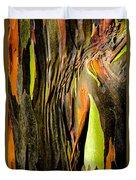 Rainbow Eucalyptus Bark Duvet Cover