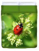 Raindrops On Ladybug Duvet Cover
