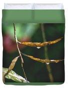 Raindrops On Leaf 3 Duvet Cover