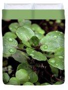 Rainy Day 11 Duvet Cover
