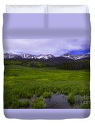 Rainy Season Duvet Cover by Barbara Schultheis