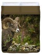Ram Eating Fireweed Duvet Cover