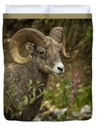 Ram Eating Fireweed Cropped Duvet Cover