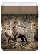 Ram Rock Mountain At Dawn Duvet Cover