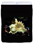 Rams Horn Seashell Duvet Cover