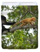 Rare Golden Monkey Duvet Cover