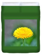Ray Of Sunshine Duvet Cover