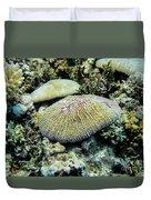 Razor Coral In Kwajalein Duvet Cover