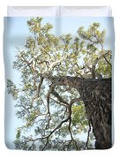 Reaching For The Sky Duvet Cover by Brandon Tabiolo - Printscapes