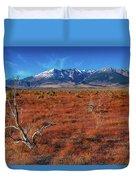 Read Fields Eastern Sierra Duvet Cover