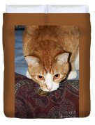 Ready To Pounce Duvet Cover