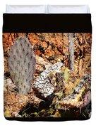Real Cactus In An Actual Desert  Duvet Cover