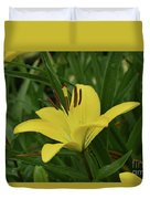 Really Beautiful Yellow Lily Growing In Nature Duvet Cover