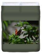 Really Elegant Oak Tiger Butterfly In Nature Duvet Cover