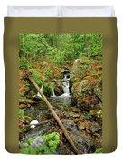 Reany Falls 2 Duvet Cover
