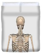 Rear View Of Human Skeletal System Duvet Cover