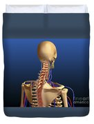 Rear View Of Human Spine And Scapula Duvet Cover