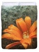 Rebutia Muscula Bright Orange Flower Duvet Cover by Heiko Koehrer-Wagner