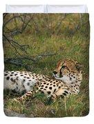 Reclining Cheetah 2 Duvet Cover