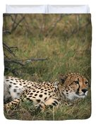 Reclining Cheetah Watching Duvet Cover