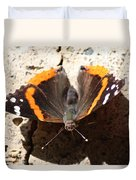 Red Admiral Close Duvet Cover