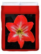 Red Amaryllis Duvet Cover