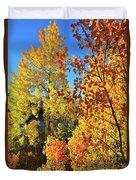 Red And Golden Aspens In Dillon Co Duvet Cover