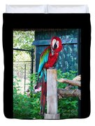 Red  And  Green Macaw         Zoo      Indiana Duvet Cover