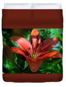 Red And Green No. 2 Duvet Cover