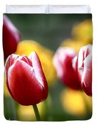 Red And White Tulips Large Canvas Art, Canvas Print, Large Art, Large Wall Decor, Home Decor Duvet Cover