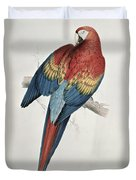 Red And Yellow Macaw  Duvet Cover