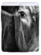 Red Angus In Black And White  Duvet Cover