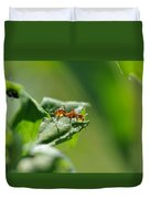 Red Ant On Leaf Duvet Cover