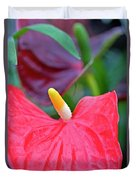 Red Anthurium Flower Duvet Cover