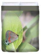 Red-banded Hairstreak Butterfly Duvet Cover