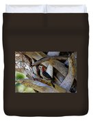 Red-bellied Woodpecker Hides On A Cabbage Palm Duvet Cover