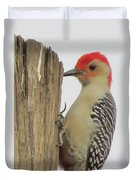 Red-bellied Woodpecker II Duvet Cover