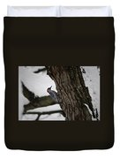 Red Bellied Woodpecker No 2 Duvet Cover