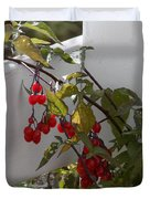 Red Berries On A White Fence Duvet Cover